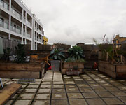 community roof garden photo